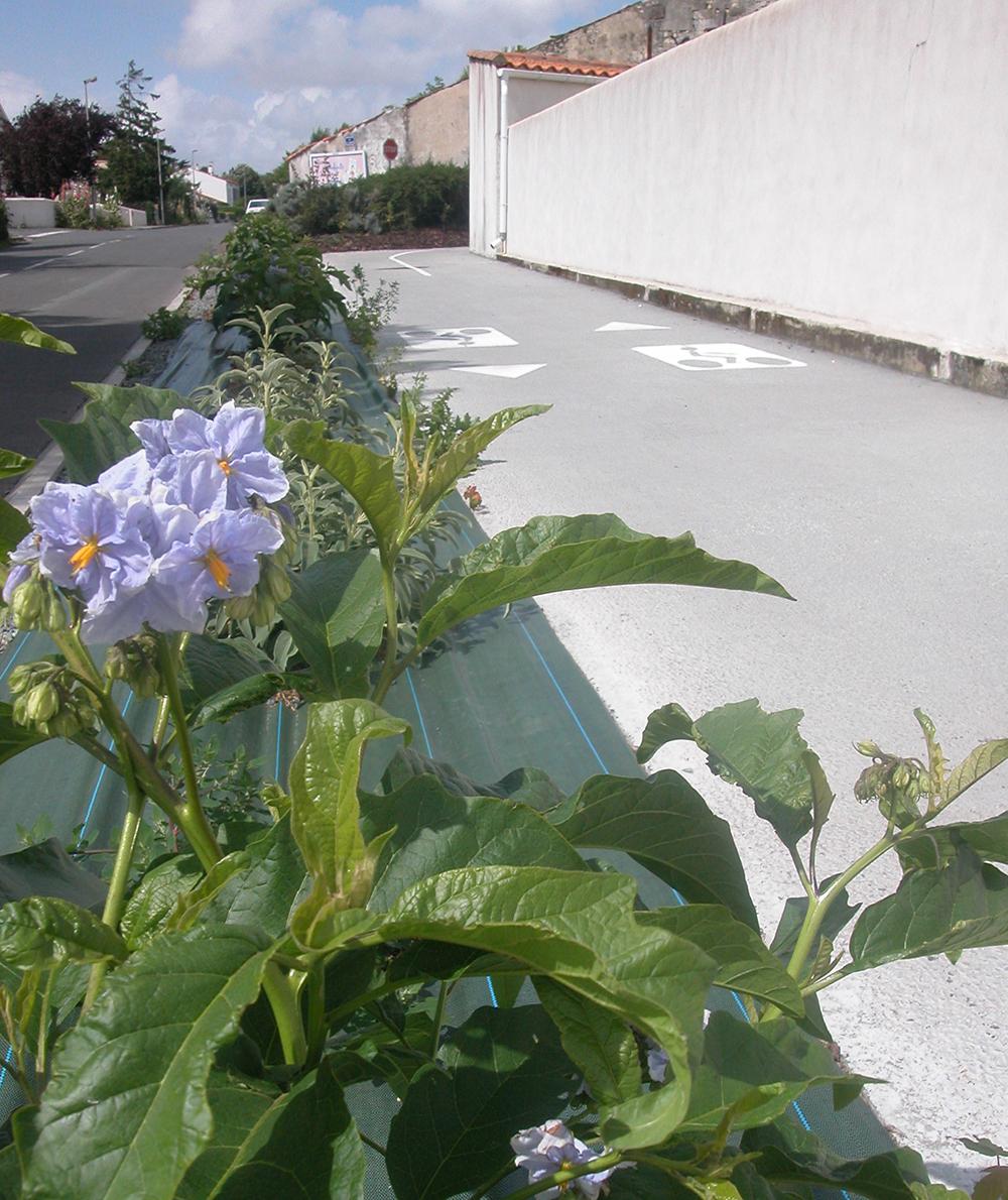 La Rochelle A Esnandes 17 Liaisons Cyclables